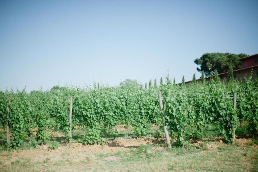 pasta 087 Wanderlusting: Tuscany, part 1