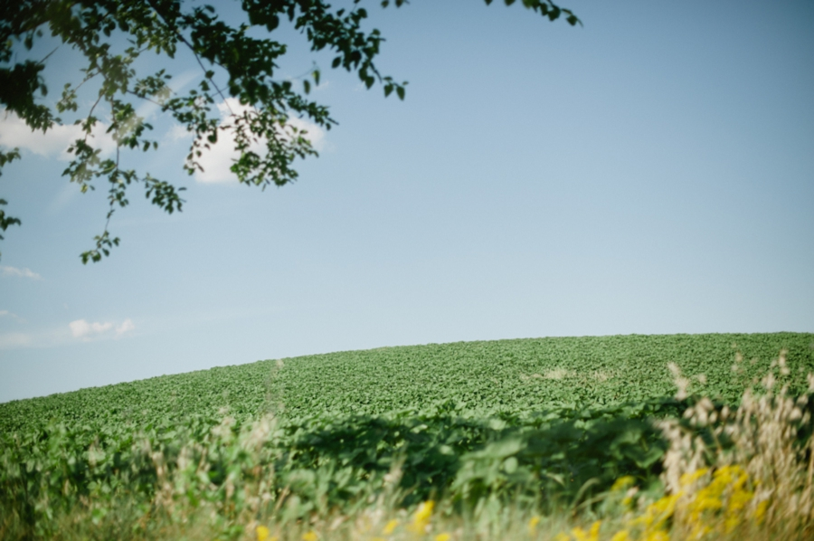 pasta 090 Wanderlusting: Tuscany, part 1