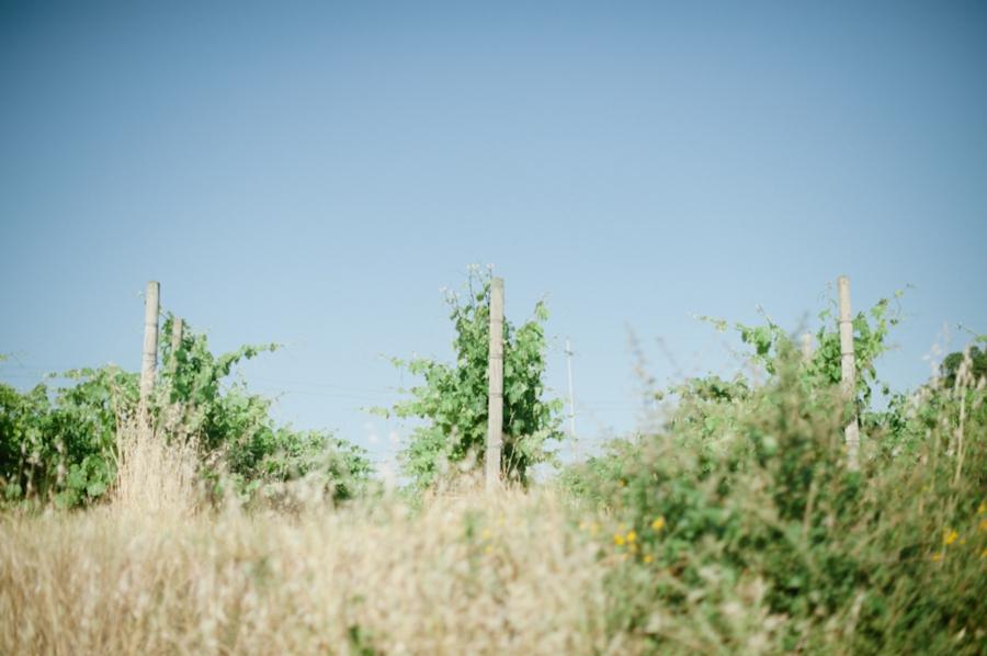 pasta 093 Wanderlusting: Tuscany, part 1